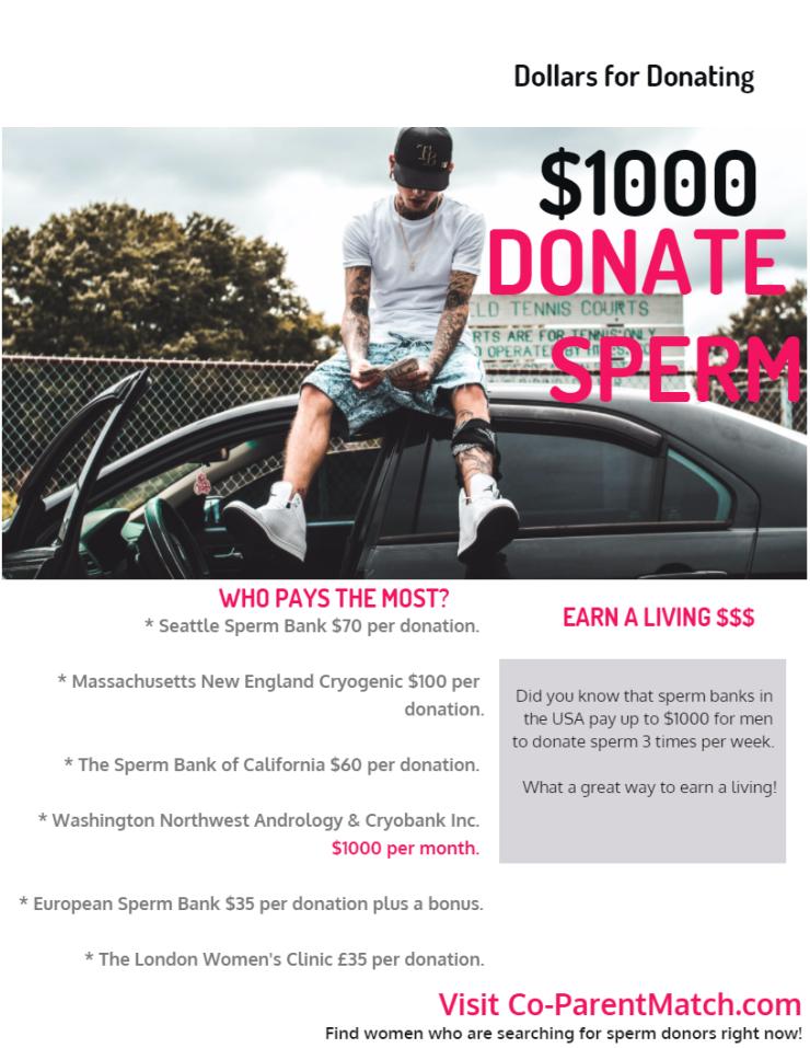 dolar untuk sumbangan