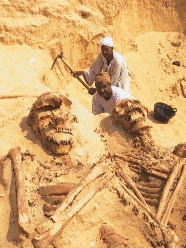 giant_bones
