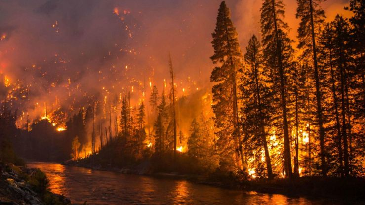 Washington-DNR-Chiwaukum-WildFires-2014-2015_WA-DNR_cropped